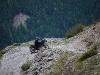 frankreich-09-83_800x800_100kb