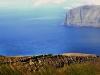 island-7_800x800_100kb